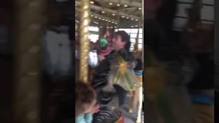 Prospect Park zoo 2017