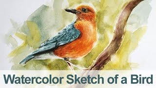 getlinkyoutube.com-Watercolor Painting - Bird Demo