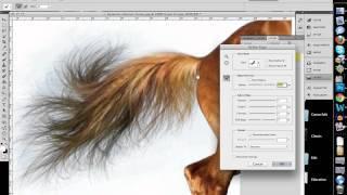 getlinkyoutube.com-How to Quickly Select Images - Cut Out Detailed Images in Photoshop CS 5