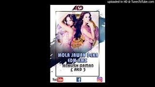 Mola Javan Dena Re_EDM RMX_Ankush Daman_( AKD )