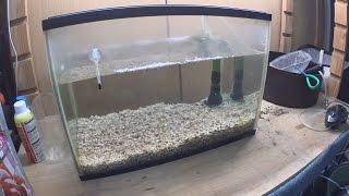 getlinkyoutube.com-【金魚】帰宅したら金魚の水槽が面倒なことになってた