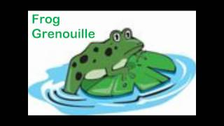 getlinkyoutube.com-Learning English and French - Lesson on Animals