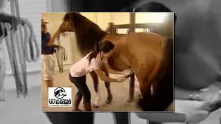 getlinkyoutube.com-Horse and Girl born love, Animals breeding and Woman - Funny video 2016, Funny Animals