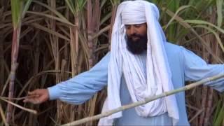 getlinkyoutube.com-Organic Sugarcane by Using Bio Gas Plant Organic Fertilizer for growing Crops 17 Feb 2013 Pakistan