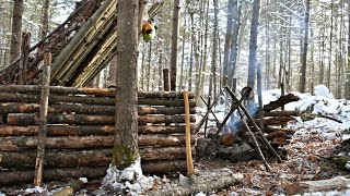 getlinkyoutube.com-Solo Bushcraft Camp. 2 Nights in the Snow - Natural Shelter, Minimal Gear.