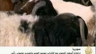 getlinkyoutube.com-ارتفاع أسعار المواشي في سورية