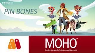 Moho Pro & Debut 12 (Anime Studio) - Pin Bones Tutorial