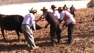 getlinkyoutube.com-HUACRAPUQUIO 2015 BARRIO CENTRO UNIÓN  - SANTIAGO