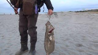 getlinkyoutube.com-遠州灘海岸物語2 サーフでヒラメ
