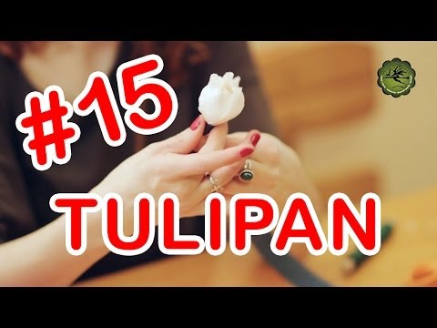 Kwiatki z bibuły #15 - tulipan