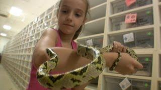 getlinkyoutube.com-My Daughter Invades BHB Reptiles! [SNAKE PARADISE]