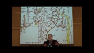 getlinkyoutube.com-PHARMACOKINETICS; Metabolism & Excretion by Professor Fink