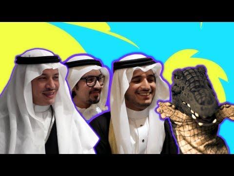 التمساح الحلقة ٣٣: التخرجية الدكتورية  | Temsa7LY 2