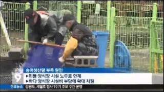 getlinkyoutube.com-송어양식 50주년-바다송어