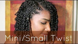 getlinkyoutube.com-Natural Hair | Mini/Small Twist Tutorial