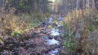 getlinkyoutube.com-Осенний одиночный поход по избам, тайга, балаганы. Дудет, Ванькина речка, Карадат 30км. пути