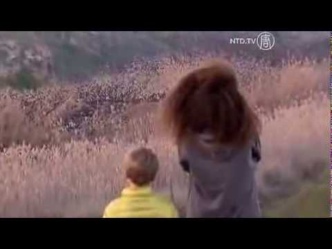 KEJADIAN ANEH DI LANGIT ISRAEL