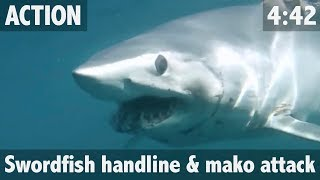 getlinkyoutube.com-GIANT SHARK ATTACKS SWORDFISH! - ULTIMATE FISHING TV