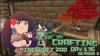 getlinkyoutube.com-The Tiniest Mushrooms in the World!! • Zoo Crafting: Episode #176