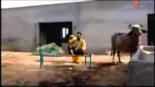 getlinkyoutube.com-punjabi husband vs wife fighting