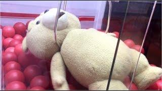 getlinkyoutube.com-【UFOキャッチャー】見た!! 確●機が握力MAXになる瞬間! Ted2 特大ぬいぐるみ
