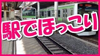 getlinkyoutube.com-日本好き外国人の和む話】巨漢な黒人さんが日本人を尊敬するワケとは・・・?