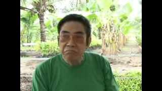 getlinkyoutube.com-Oscar Garin - Gawad Saka CY2013 Outstanding Coconut Farmer Regional Winner (Region VI)