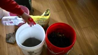 getlinkyoutube.com-Building a Bucket Worm Composter and Harvesting Castings