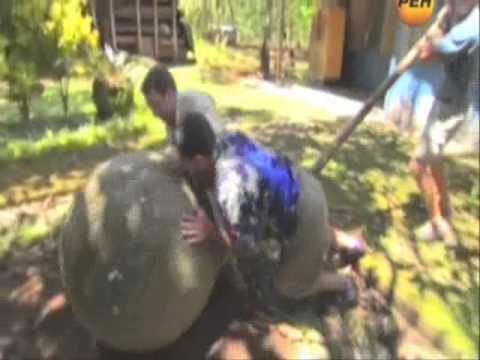 Уникальные каменные шары Коста-Рики