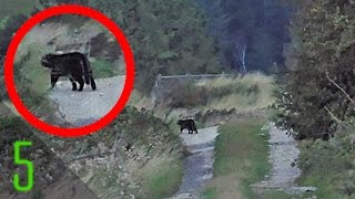 getlinkyoutube.com-5 Forgotten Photos that Answered Unsolved Mysteries