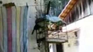 CAÇA DE TRINCA FERRO