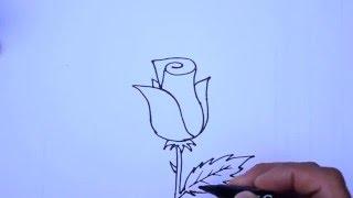 getlinkyoutube.com-Como desenhar uma rosa - muito fácil