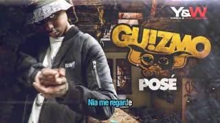 Guizmo - Posé