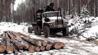 getlinkyoutube.com-Один день из жизни лесоруба (Резня бензопилой)