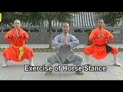 Shaolin kung fu basic moves