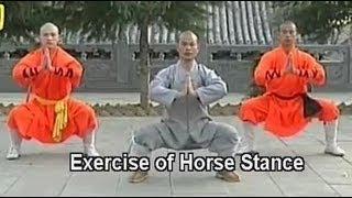 getlinkyoutube.com-Shaolin kung fu basic moves 1