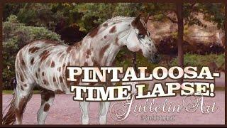 getlinkyoutube.com-Pintaloosa- Time Lapse!