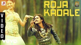 Anegan - Roja Kadale Video | Dhanush | Harris Jayaraj