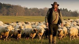 getlinkyoutube.com-La Transumanza dei Pastori d'Abruzzo