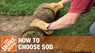 A video on how to choose and buy sod.