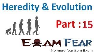 Biology Heredity & evolution part 15 (Speciation) CBSE class 10 X