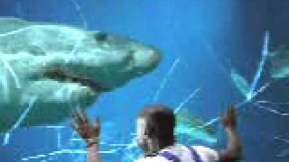 getlinkyoutube.com-(Funny video) 水族館でのハプニング