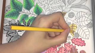 getlinkyoutube.com-Secret Garden Coloring Book (Page 7)