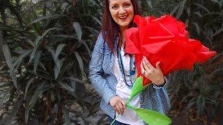 getlinkyoutube.com-Chuladas Creativas :: Rosas Gigantes :: Ramos de Rosas Crepe
