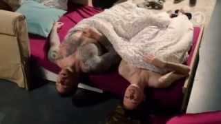 getlinkyoutube.com-Sascha and Caro - Verbotene Liebe 07.08.2014, English subtitles (Episode 4546)