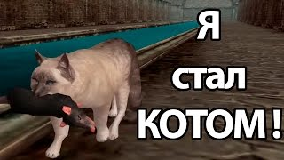 getlinkyoutube.com-Я стал КОТОМ ! ( Ultimate Cat Simulator )