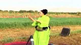 غناء ورقص مغربي عربي شعبي مع نشيط - Chaabi Arabes Maroc