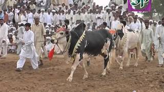 getlinkyoutube.com-karah mureed chakwal 22/3/2012 (part 1) کراہ مرید چکوال
