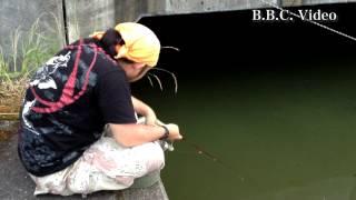 2012/06/28 ギル釣りにバスがヒット!! やる夫くん釣り修行日誌