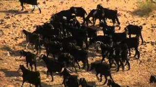 getlinkyoutube.com-BBC Journeys from the Centre of the Earth 1of6 Risky Rocks DivX MP3 UKNova